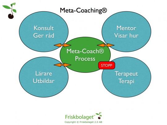 Metacoaching.003